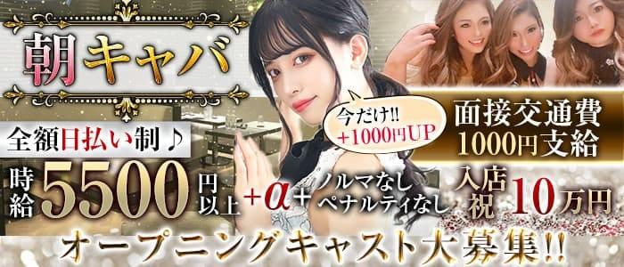 【朝】SHELTER 2(シェルター2)【公式求人・体入情報】 歌舞伎町昼キャバ・朝キャバ バナー