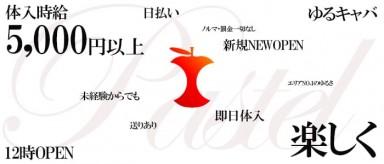 パステル【公式求人情報】(立川キャバクラ)の求人・バイト・体験入店情報