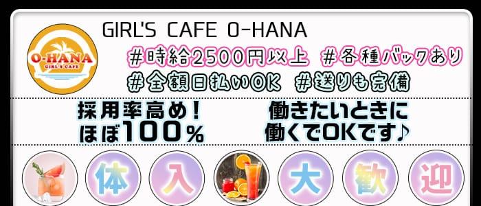 GIRL'S CAFE O-HANA(オハナ) 錦糸町ガールズバー バナー