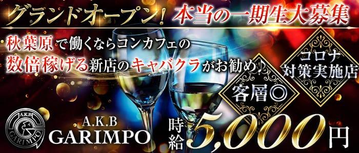【秋葉原】A.K.B GARIMPO(エーケービーガリンポ) 秋葉原キャバクラ バナー