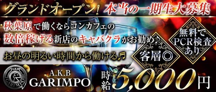 【昼・夜】【秋葉原】A.K.B GARIMPO(エーケービーガリンポ)【公式求人・体入情報】 秋葉原キャバクラ バナー