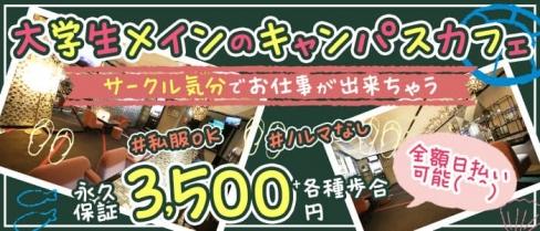 渋谷NAVY(ネイビー)【公式求人・体入情報】(渋谷ガールズバー)の求人・体験入店情報