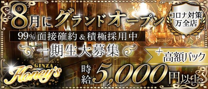 GINZA Honey's(ギンザハニーズ) 銀座ニュークラブ バナー