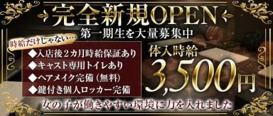 Club NOX(ノックス)【公式求人・体入情報】(所沢キャバクラ)の求人・バイト・体験入店情報