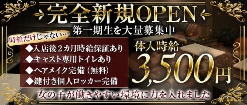 Club NOX(ノックス)【公式求人・体入情報】(所沢キャバクラ)の求人・体験入店情報