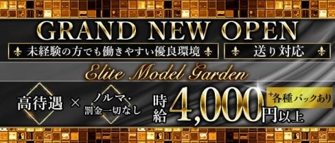 【武蔵小杉】Elite Model Garden(エリートモデルガーデン)【公式求人情報】(武蔵小杉キャバクラ)の求人・バイト・体験入店情報