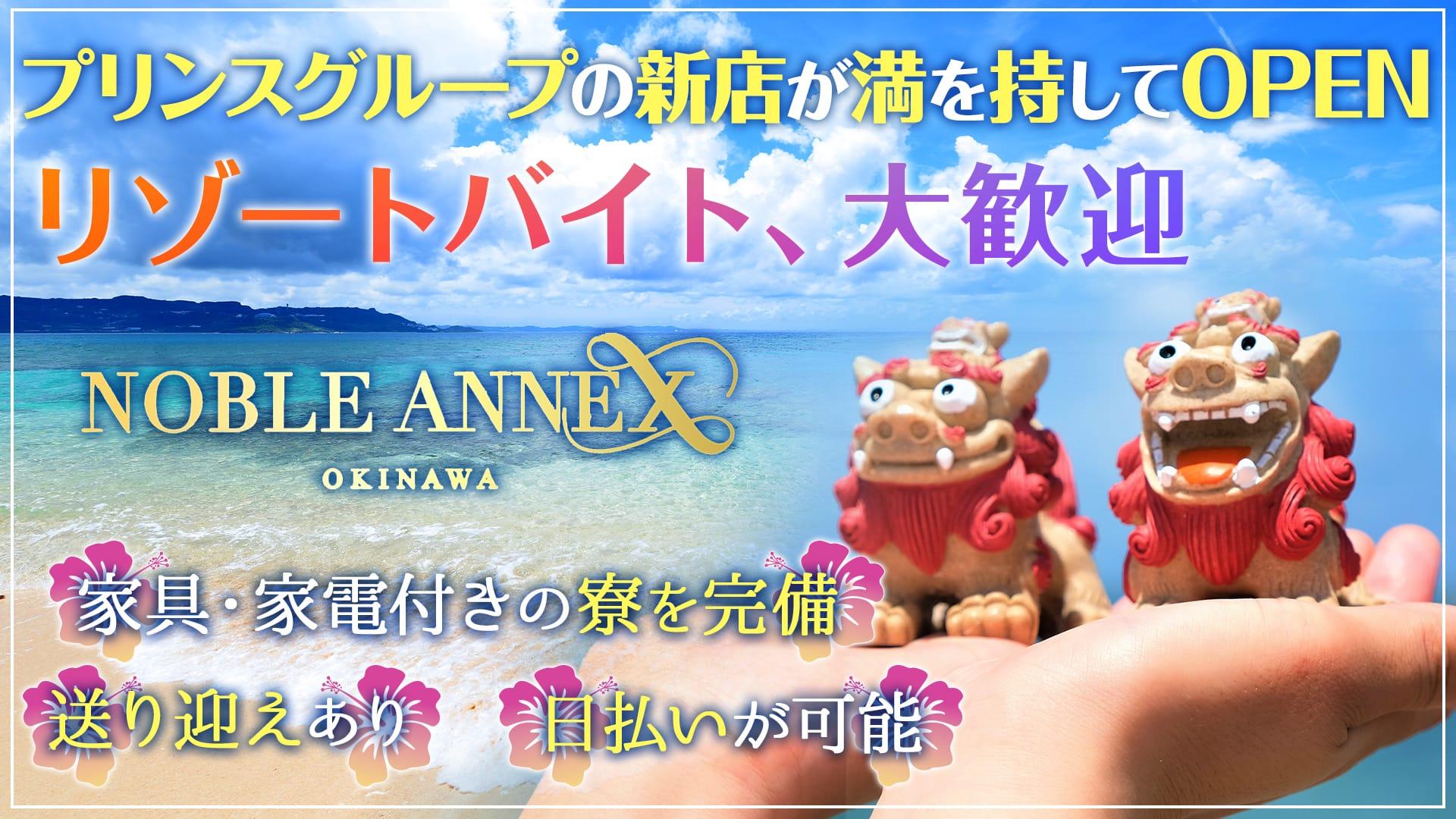 沖縄NOBLE ANNEX(ノーブルアネックス) すすきのニュークラブ TOP画像