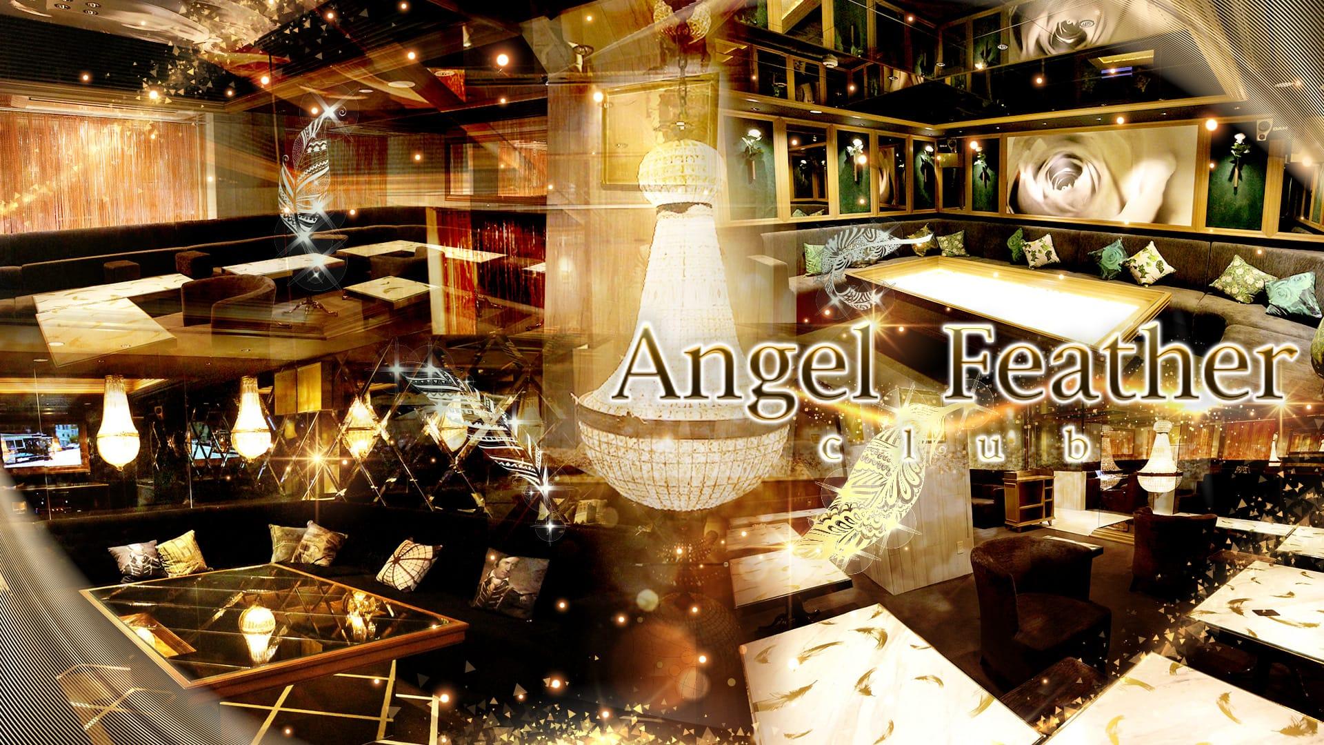 Angel Feather 池袋(エンジェルフェザー)  池袋キャバクラ TOP画像