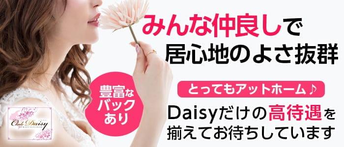 Club Daisy(デイジー)【公式求人・体入情報】 都町キャバクラ バナー