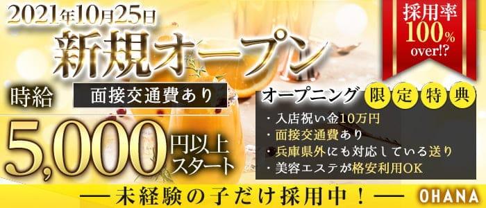 Ohana(オハナ)【公式求人・体入情報】 三宮ニュークラブ バナー