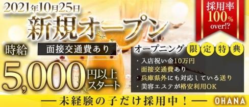 Ohana(オハナ)【公式求人・体入情報】(三宮ニュークラブ)の求人・体験入店情報