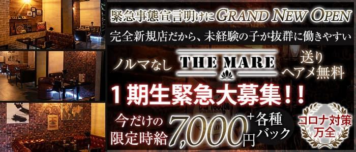 【津田沼】THE MARE(マーレ)【公式求人・体入情報】 西船橋キャバクラ バナー
