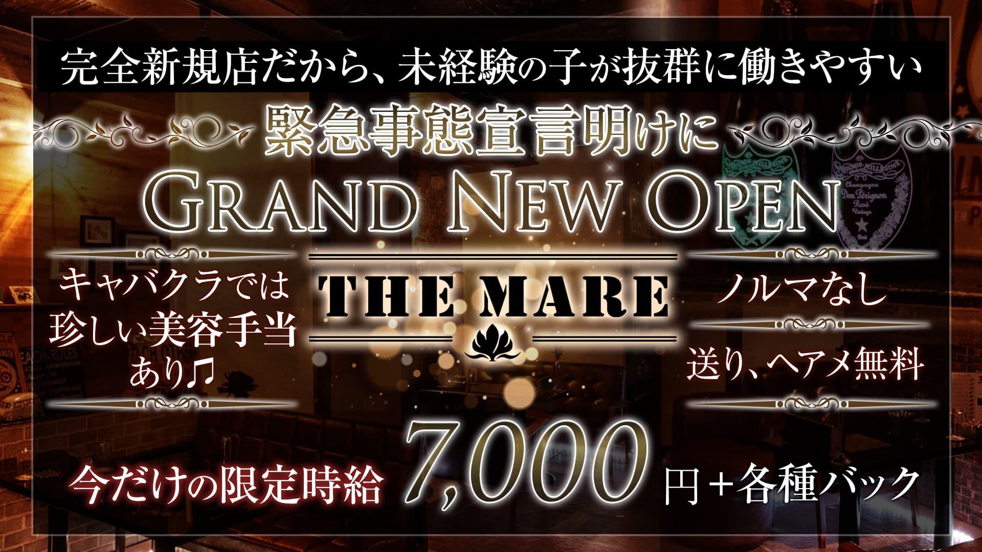 【津田沼】THE MARE(マーレ)【公式求人・体入情報】 西船橋キャバクラ TOP画像