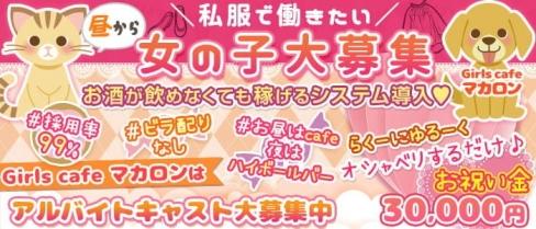 Girlscafe マカロン【公式求人・体入情報】(赤羽ガールズバー)の求人・体験入店情報
