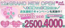 Girls Bar Honey Flash Annex(ハニーフラッシュアネックス)【公式求人・体入情報】 バナー