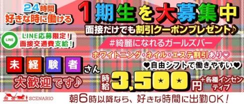 【24時間】Girls Bar SCENARIO(シナリオ)【朝・昼・夜】【公式求人・体入情報】(新宿ガールズバー)の求人・バイト・体験入店情報