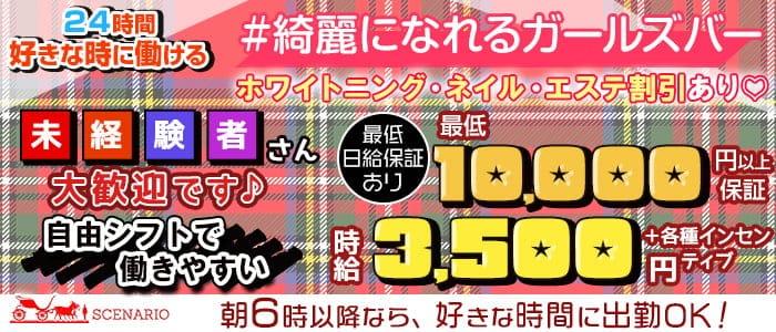 【24時間】Girls Bar SCENARIO(シナリオ)【朝・昼・夜】【公式求人・体入情報】 新宿ガールズバー バナー