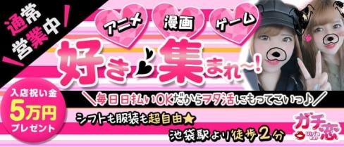 ガチ恋池袋店 (ガチコイ)【公式求人・体入情報】(池袋ガールズバー)の求人・体験入店情報