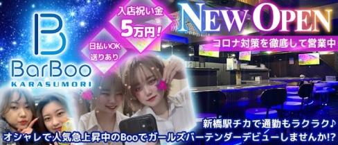 Girls Bar Boo(ブー)【公式求人・体入情報】(新橋ガールズバー)の求人・体験入店情報