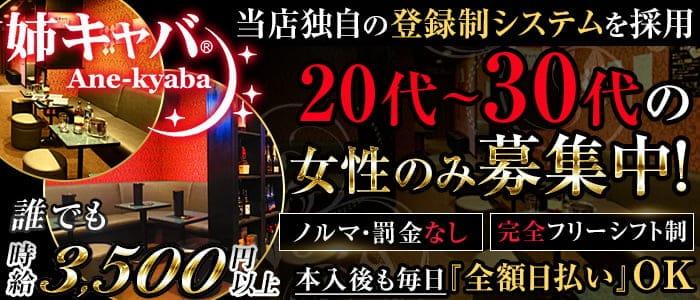 姉キャバ☆神田南口店【公式求人・体入情報】 神田姉キャバ・半熟キャバ バナー
