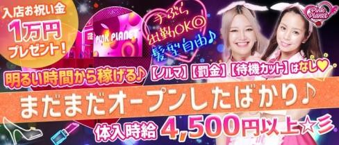【昼・夜】PINK PLANET (ピンクプラネット)【公式求人・体入情報】(歌舞伎町ガールズバー)の求人・体験入店情報