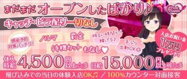 【昼・夜】PINK PLANET (ピンクプラネット)【公式求人・体入情報】(歌舞伎町ガールズバー)の求人・バイト・体験入店情報