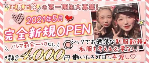 Girls Bar Sugar Pocket(シュガーポケット)【公式求人・体入情報】(新橋ガールズバー)の求人・体験入店情報