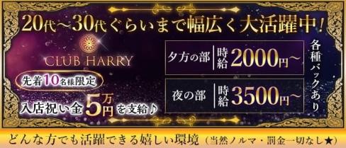 CLUB HARRY(ハリー)【公式求人・体入情報】(葛西キャバクラ)の求人・体験入店情報
