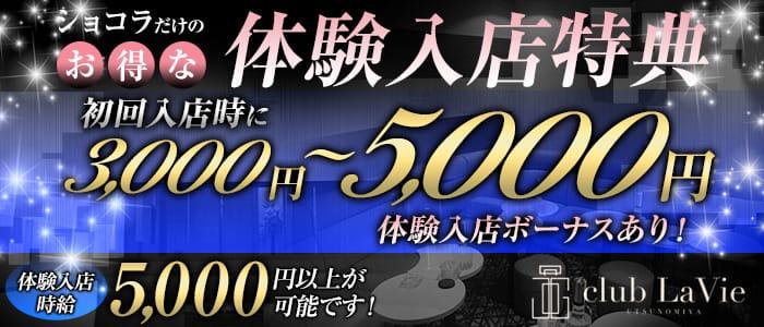 club LaVie (ラヴィ)【公式求人・体入情報】 宇都宮キャバクラ バナー