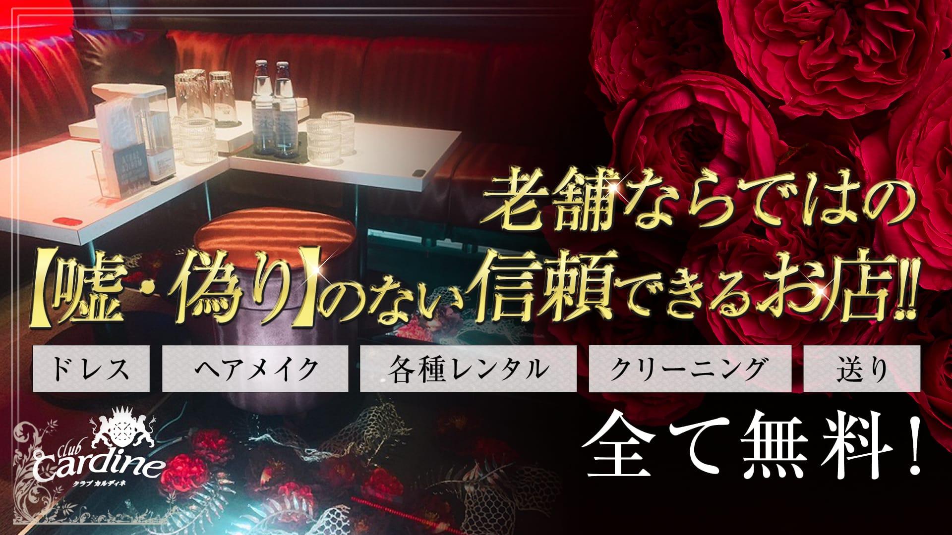 club Cardine(カルディネ)【公式求人・体入情報】 草加キャバクラ TOP画像