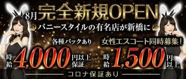 【新橋】Tokyo on the Dream(トウキョウオンザドリーム)【公式求人・体入情報】(秋葉原キャバクラ)の求人・バイト・体験入店情報