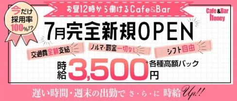 Cafe &Bar honey(ハニー)【公式求人・体入情報】(錦糸町ガールズバー)の求人・バイト・体験入店情報