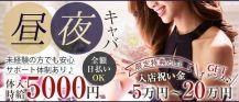 Now(ナウ)【公式求人・体入情報】 バナー