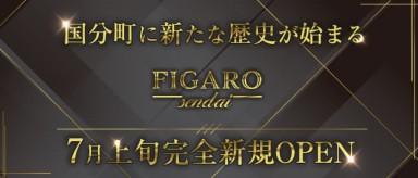 FIGARO(フィガロ)【公式求人・体入情報】(国分町キャバクラ)の求人・バイト・体験入店情報