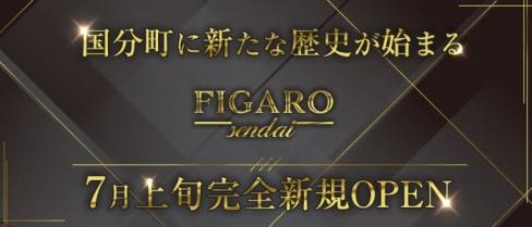 FIGARO(フィガロ)【公式求人・体入情報】(国分町キャバクラ)の求人・体験入店情報