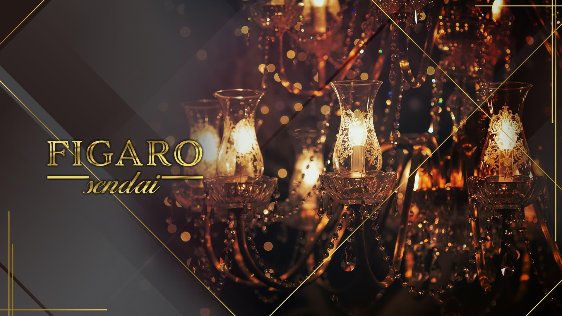 FIGARO(フィガロ)【公式求人・体入情報】 国分町キャバクラ TOP画像