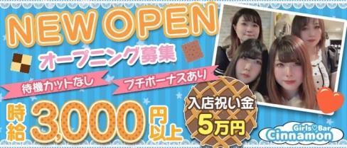 Girls Bar Cinnamon (シナモン)【公式求人・体入情報】(関内ガールズバー)の求人・体験入店情報
