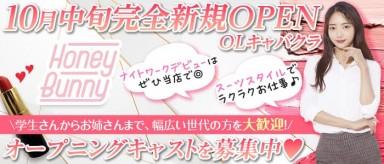 Honey Bunny(ハニーバニー)【公式求人・体入情報】(上田キャバクラ)の求人・バイト・体験入店情報