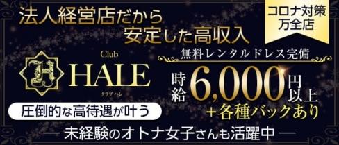 club HALE(ハレ)【公式求人・体入情報】(心斎橋ラウンジ)の求人・体験入店情報