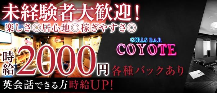 Girls Bar COYOTE(コヨーテ) すすきのガールズバー バナー