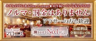 会員制Bar Lounge マロニエ【公式求人情報】(三宮ラウンジ)の求人・バイト・体験入店情報
