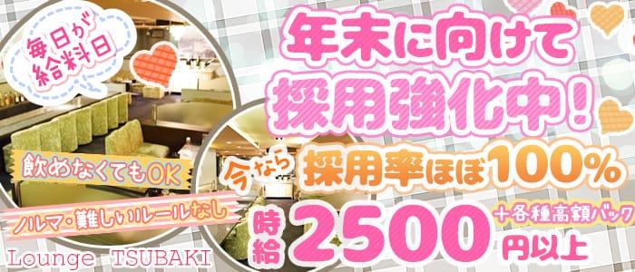 (奈良)Lounge TSUBAKI -ツバキ-【公式求人・体入情報】 新大宮ラウンジ バナー