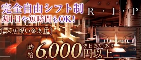 R・I・P-アール・アイ・ピーミナミ-【公式】(難波キャバクラ)の求人・バイト・体験入店情報