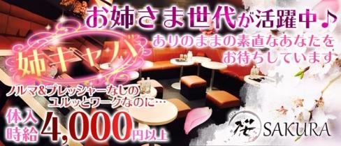 CLUB SAKURA(サクラ)【公式求人情報】(草加姉キャバ・半熟キャバ)の求人・バイト・体験入店情報