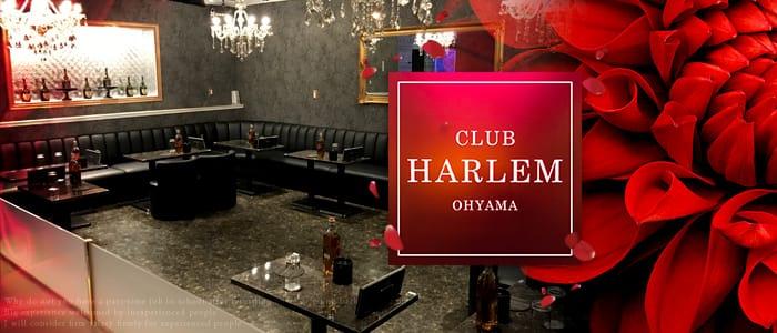 CLUB HARLEM OHYAMA (ハーレム) バナー