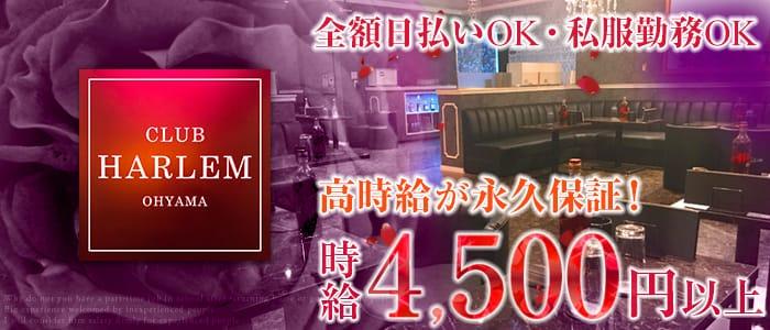 CLUB HARLEM OHYAMA (ハーレム) 大山キャバクラ バナー