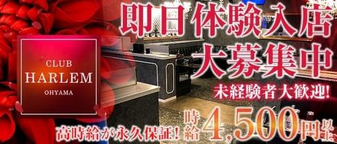 CLUB HARLEM OHYAMA (ハーレム)【公式求人情報】(大山キャバクラ)の求人・バイト・体験入店情報