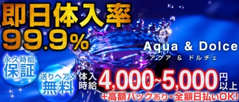 Aqua & Dolce~アクアアンドドルチェ~【公式求人情報】(八王子キャバクラ)の求人・バイト・体験入店情報