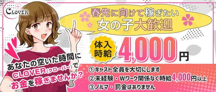 カジュアルキャバクラ Club CLOVER (クローバー)【公式求人・体入情報】 歌舞伎町キャバクラ バナー