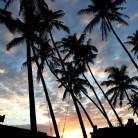 ゆうり 海苑 in Bali(カイエン) 画像20200406150524403.jpg